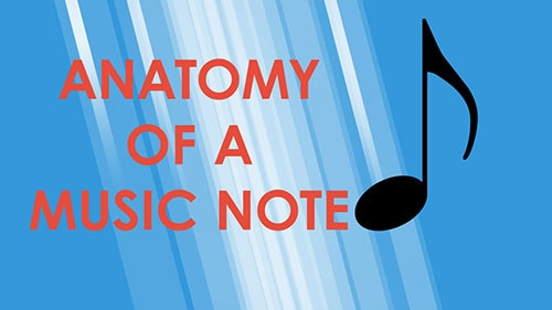 Music_Theory_09_anatomy-min